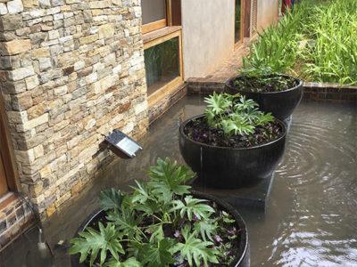 Jardins Residenciais - Vasos Externos
